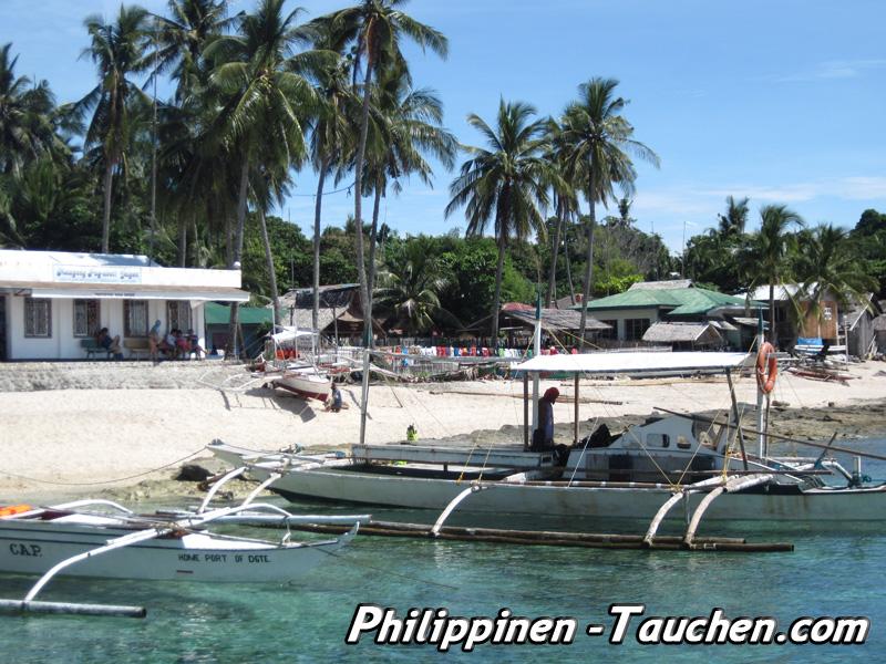 Tauchen in Apo Island